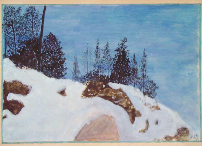 Snowy region